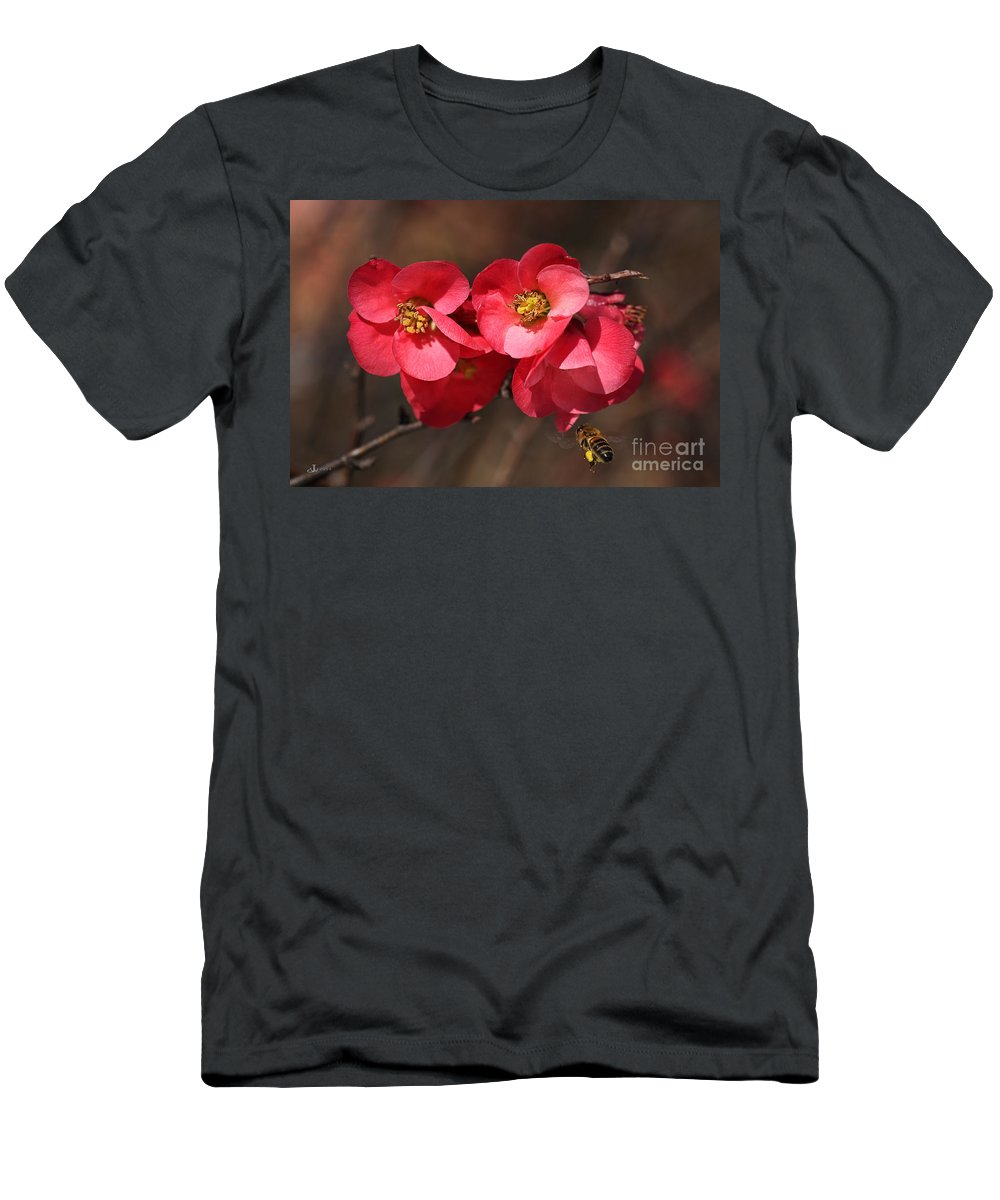 Bubbleblue Men's T-Shirt (Athletic Fit) featuring the photograph Flowering Quince With Bee by Joy Watson