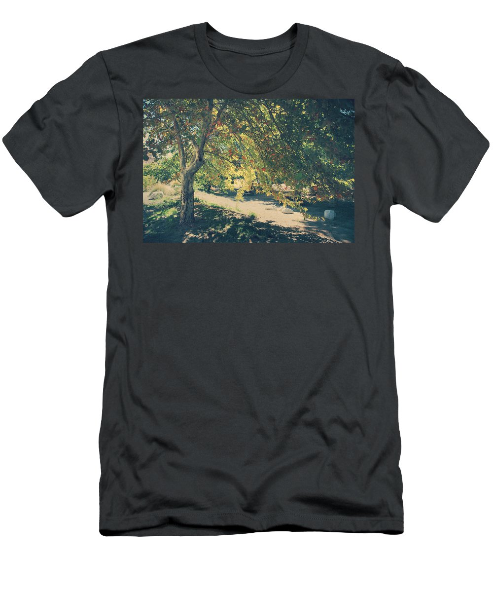 Whitewater Preserve Men's T-Shirt (Athletic Fit) featuring the photograph Flowing Golden Locks by Laurie Search