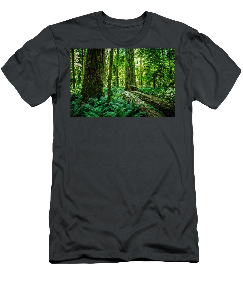 Old Growth Forest Men's T-Shirt (Athletic Fit) featuring the photograph Forest Of Cathedral Grove Collection 8 by Roxy Hurtubise