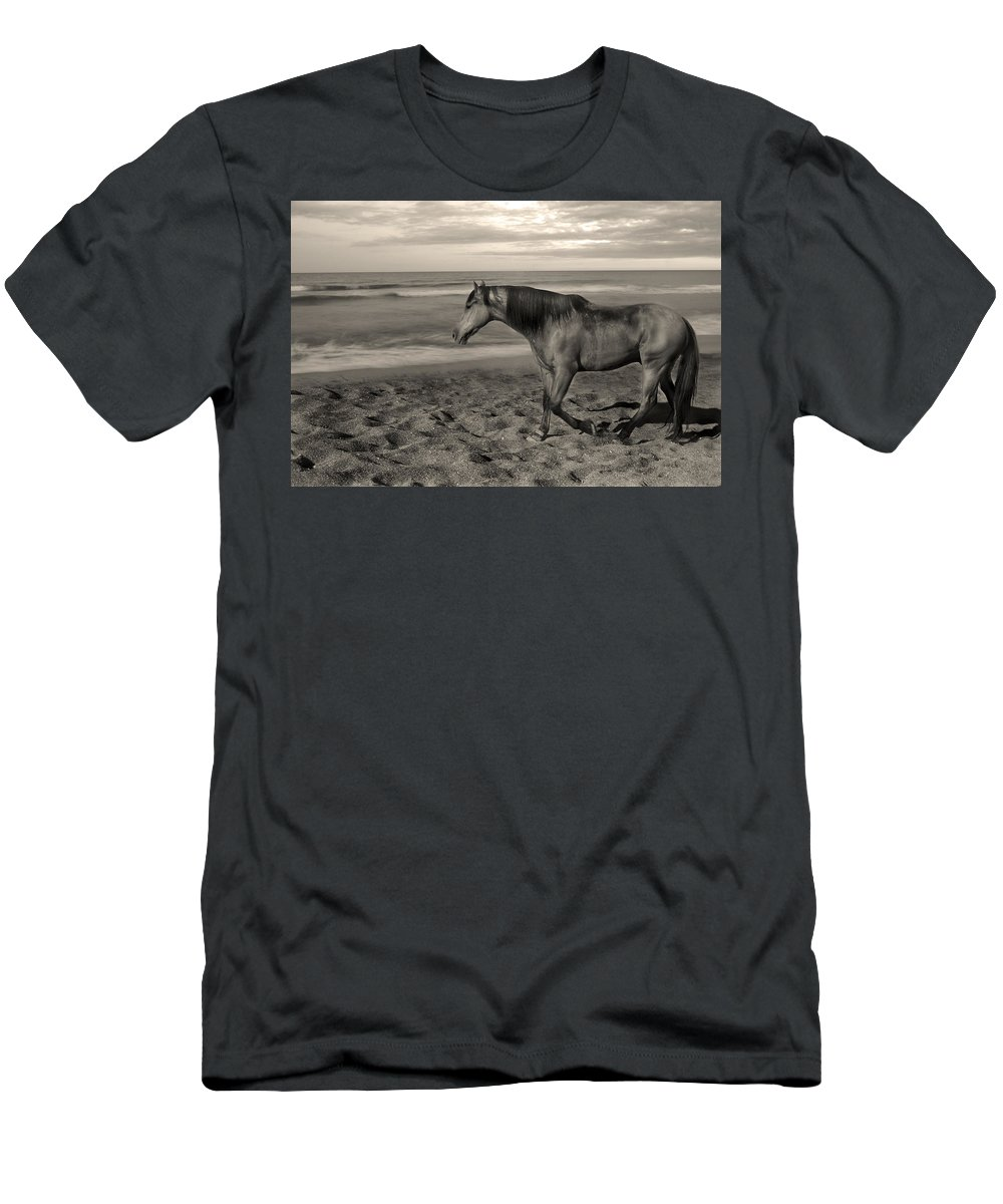 Free Men's T-Shirt (Athletic Fit) featuring the photograph Freedom by Gina Dsgn