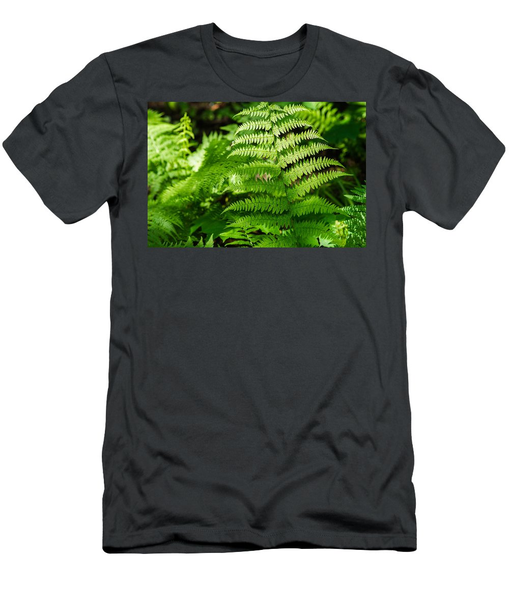 Agriculture Men's T-Shirt (Athletic Fit) featuring the photograph Fresh Fern - Featured 2 by Alexander Senin