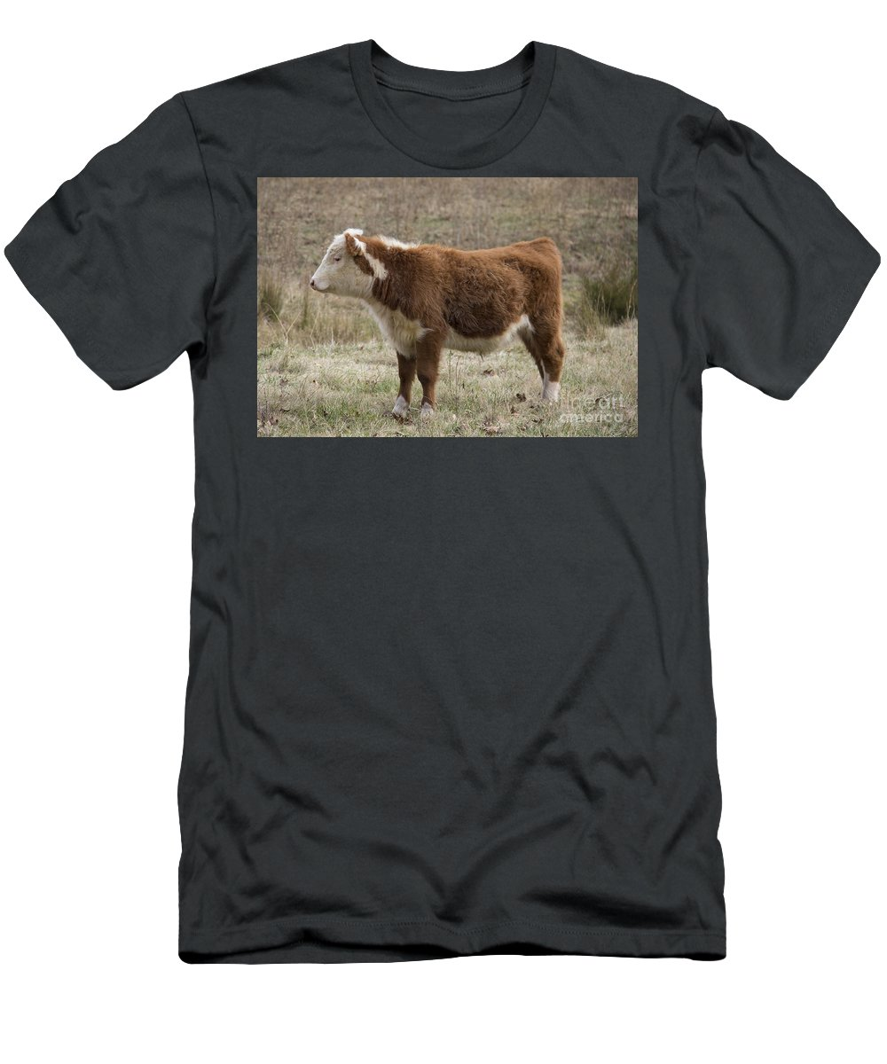Cow Men's T-Shirt (Athletic Fit) featuring the photograph Frick In Profile by Teresa Mucha