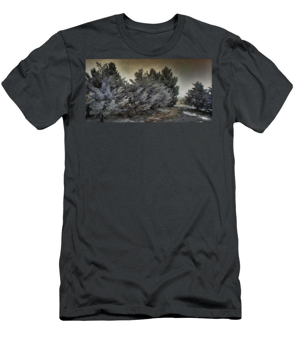 Postcard Men's T-Shirt (Athletic Fit) featuring the photograph Frozen November Day by Ellen Heaverlo