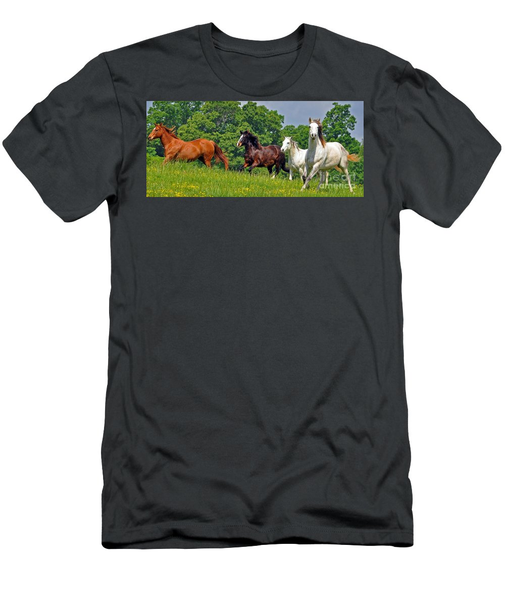 Horses Men's T-Shirt (Athletic Fit) featuring the photograph Fun Run 4 by Lydia Holly