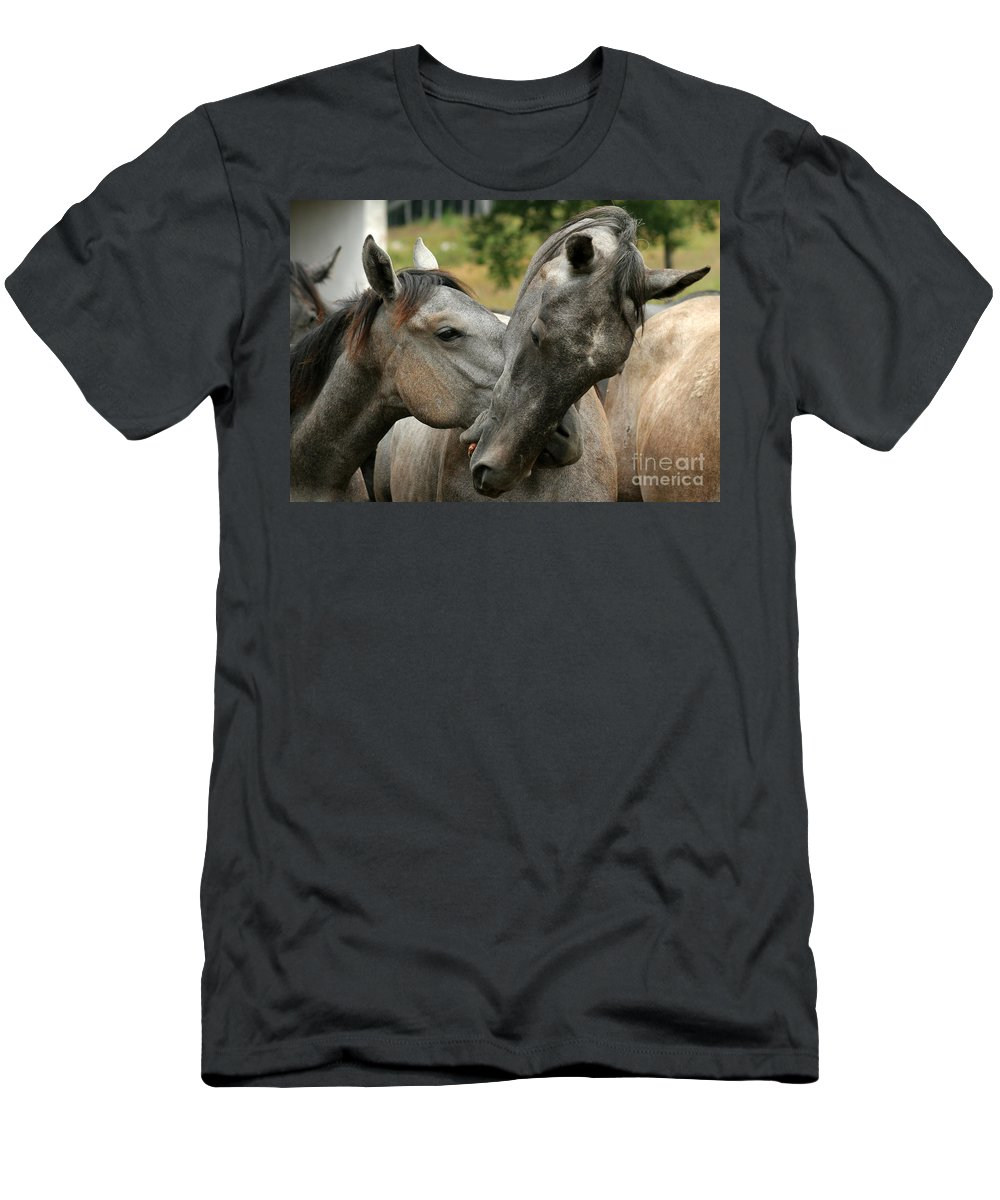 Horse Men's T-Shirt (Athletic Fit) featuring the photograph Funny Horses by Angel Ciesniarska