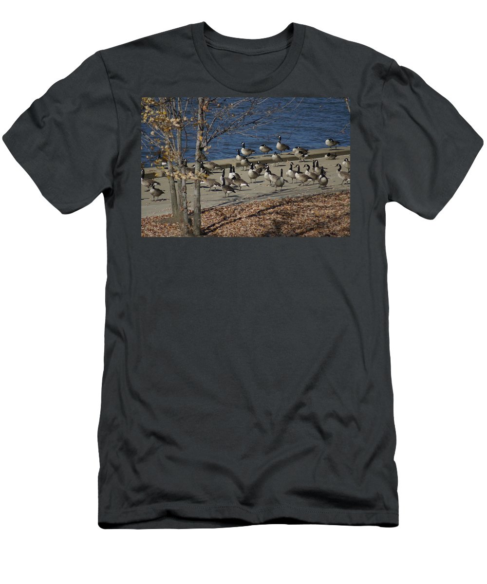 Birds Men's T-Shirt (Athletic Fit) featuring the photograph Geese At Port Landing by Stephanie Irvin