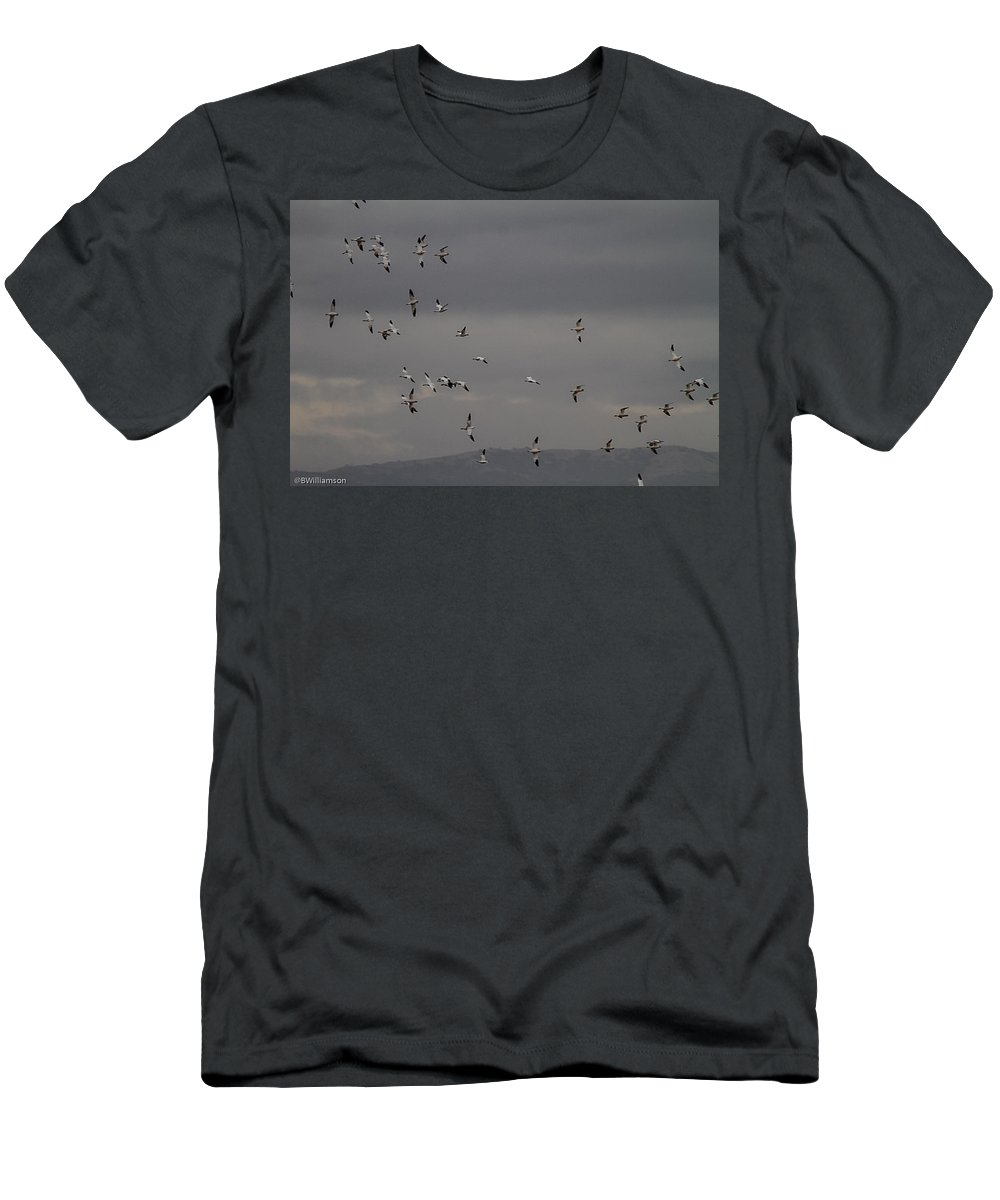Geese Men's T-Shirt (Athletic Fit) featuring the photograph Getting Sidways by Brian Williamson
