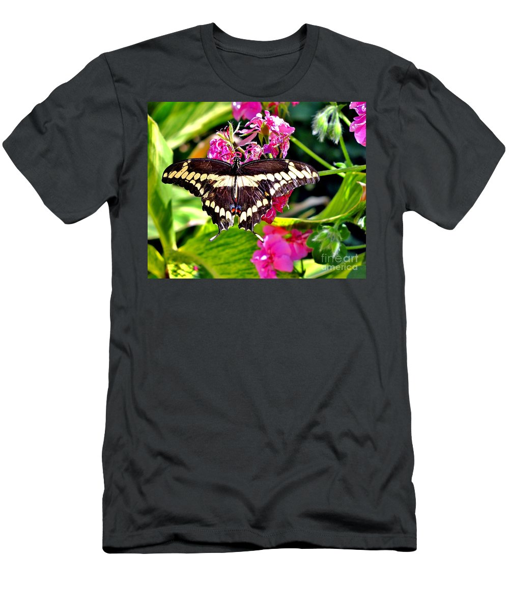 Butterfly Men's T-Shirt (Athletic Fit) featuring the photograph Giant Swallowtail by Marilyn Smith