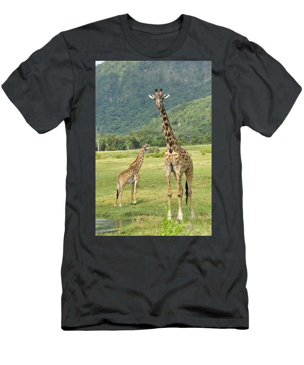 Thomas Marent Men's T-Shirt (Athletic Fit) featuring the photograph Giraffe Mother And Calftanzania by Thomas Marent