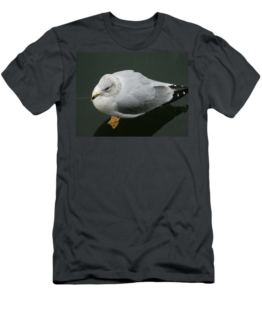 Golden Eye View Men's T-Shirt (Athletic Fit) featuring the photograph Golden Eye View by Emmy Vickers