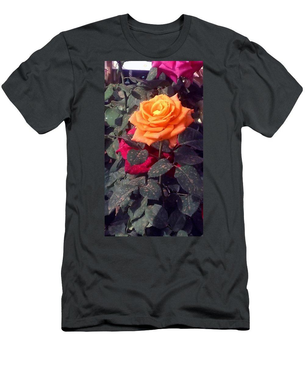 Yellow Rose Men's T-Shirt (Athletic Fit) featuring the painting Golden Rose by Usha Shantharam