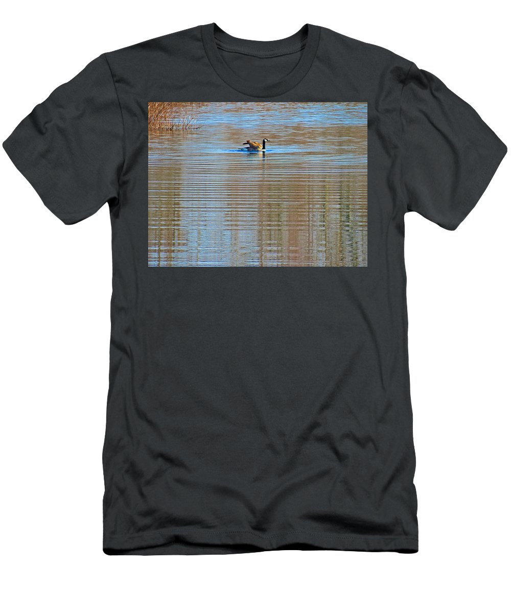 Canadian Goose Men's T-Shirt (Athletic Fit) featuring the photograph Goose Ripples by MTBobbins Photography