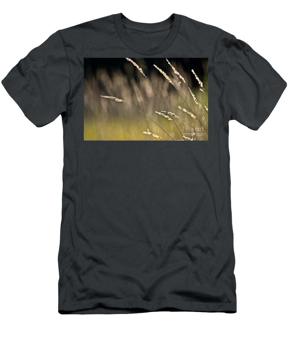 Men's T-Shirt (Athletic Fit) featuring the photograph Grasses Blowing by Cheryl Baxter