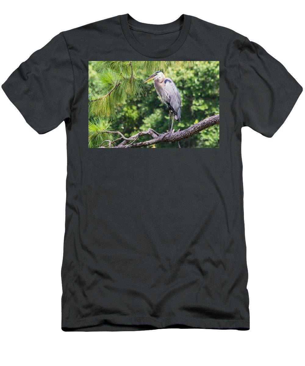 susan Molnar Men's T-Shirt (Athletic Fit) featuring the photograph Great Blue Heron I by Susan Molnar
