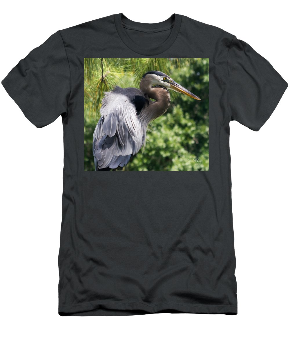 susan Molnar Men's T-Shirt (Athletic Fit) featuring the photograph Great Blue Heron Vi by Susan Molnar