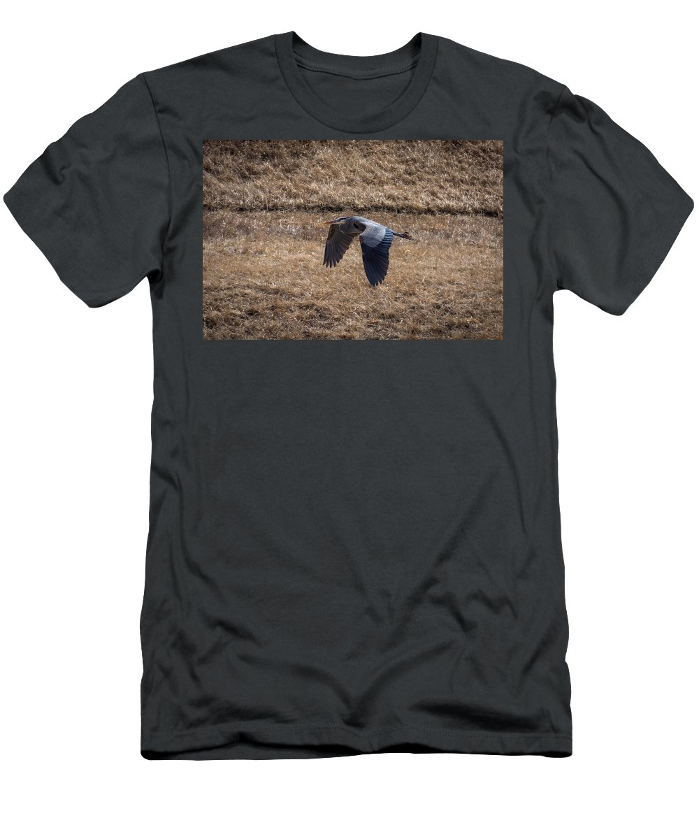 South Dakota Men's T-Shirt (Athletic Fit) featuring the photograph Great Blue In Flight 2 by M Dale