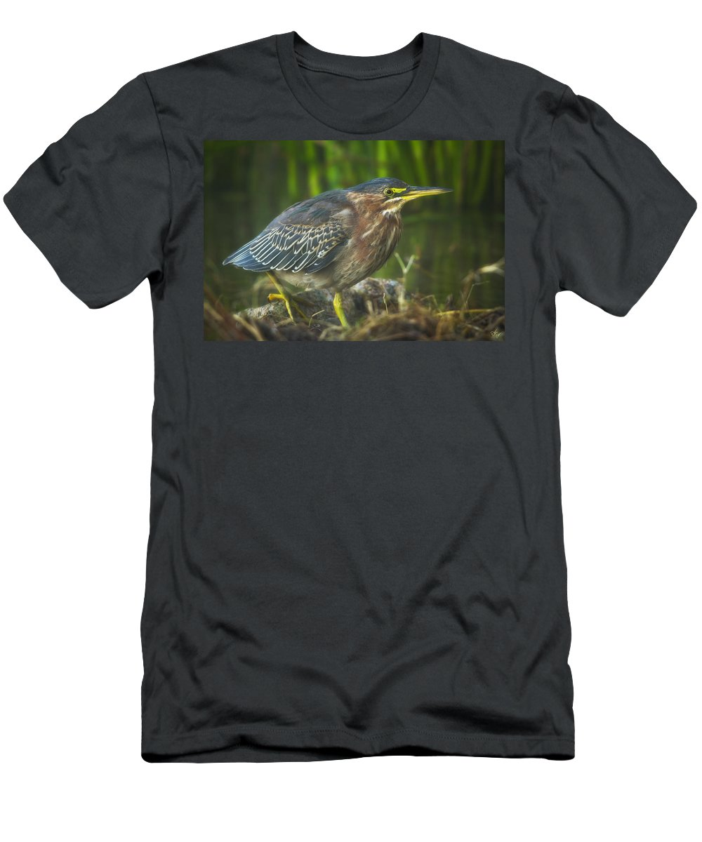 Green Heron Men's T-Shirt (Athletic Fit) featuring the photograph Green Goblin by Peter Coskun