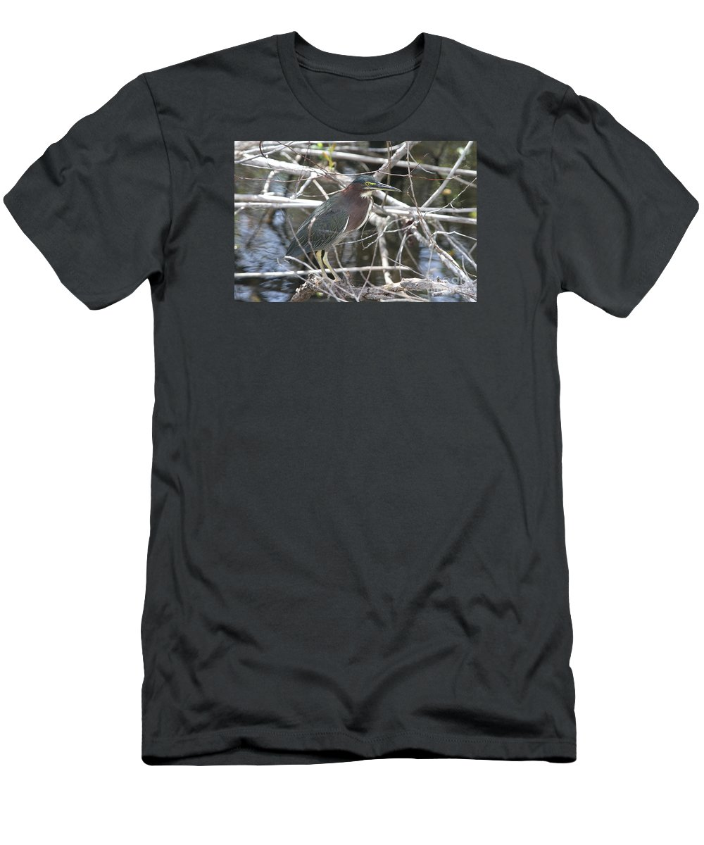 Green Heron Men's T-Shirt (Athletic Fit) featuring the photograph Green Heron In Everglades Np by Christiane Schulze Art And Photography