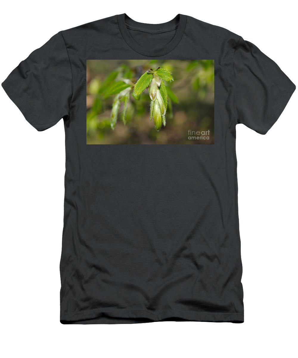 Blade Men's T-Shirt (Athletic Fit) featuring the photograph Green Leaves by Mats Silvan