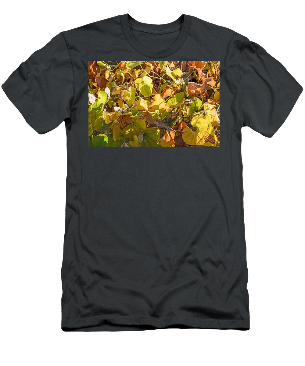 Autumn Men's T-Shirt (Athletic Fit) featuring the photograph Green Yellow And Dry Leaves by Alain De Maximy