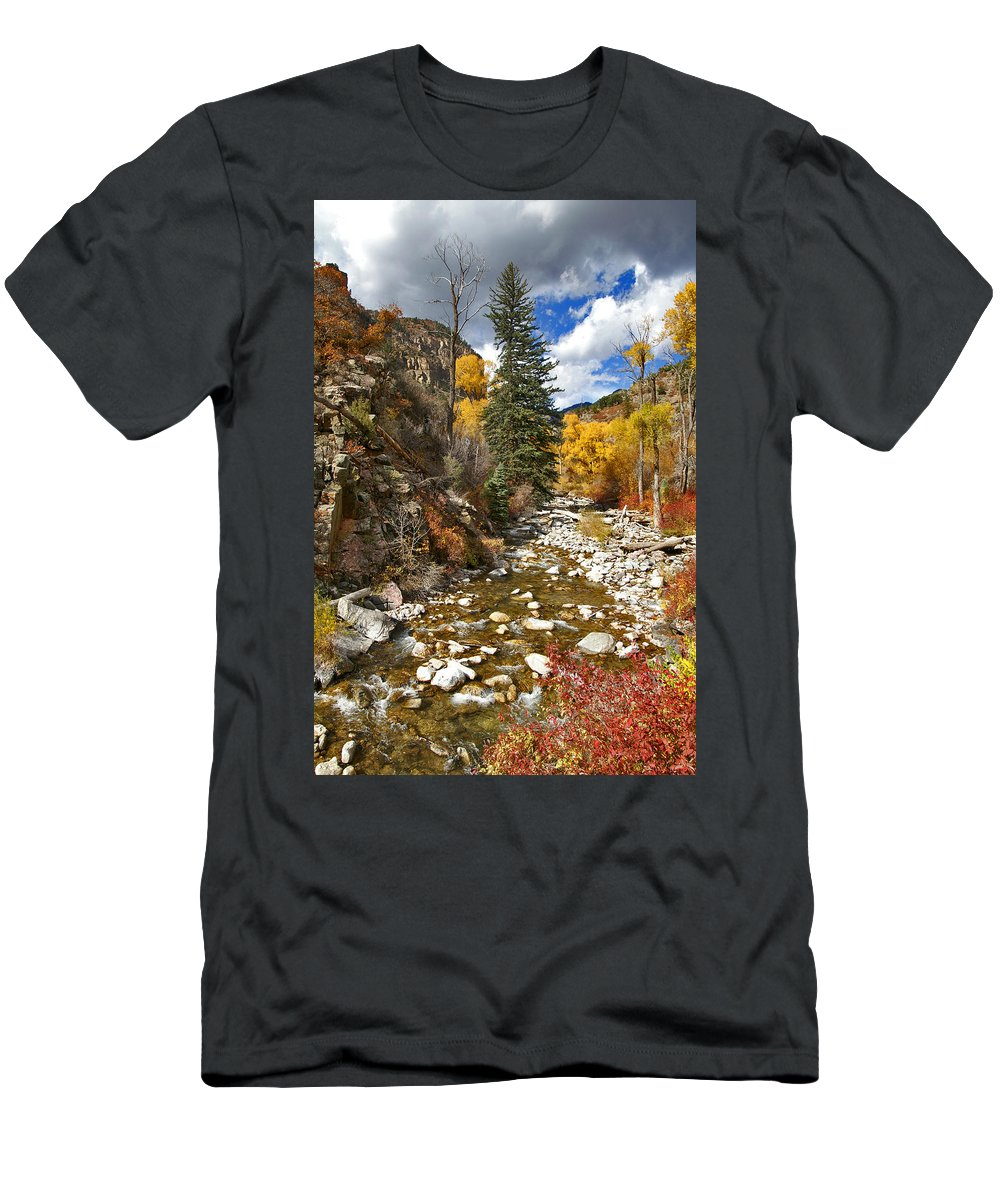 Grizzly Creek Men's T-Shirt (Athletic Fit) featuring the photograph Grizzly Creek Cottonwoods Vertical by Jeremy Rhoades