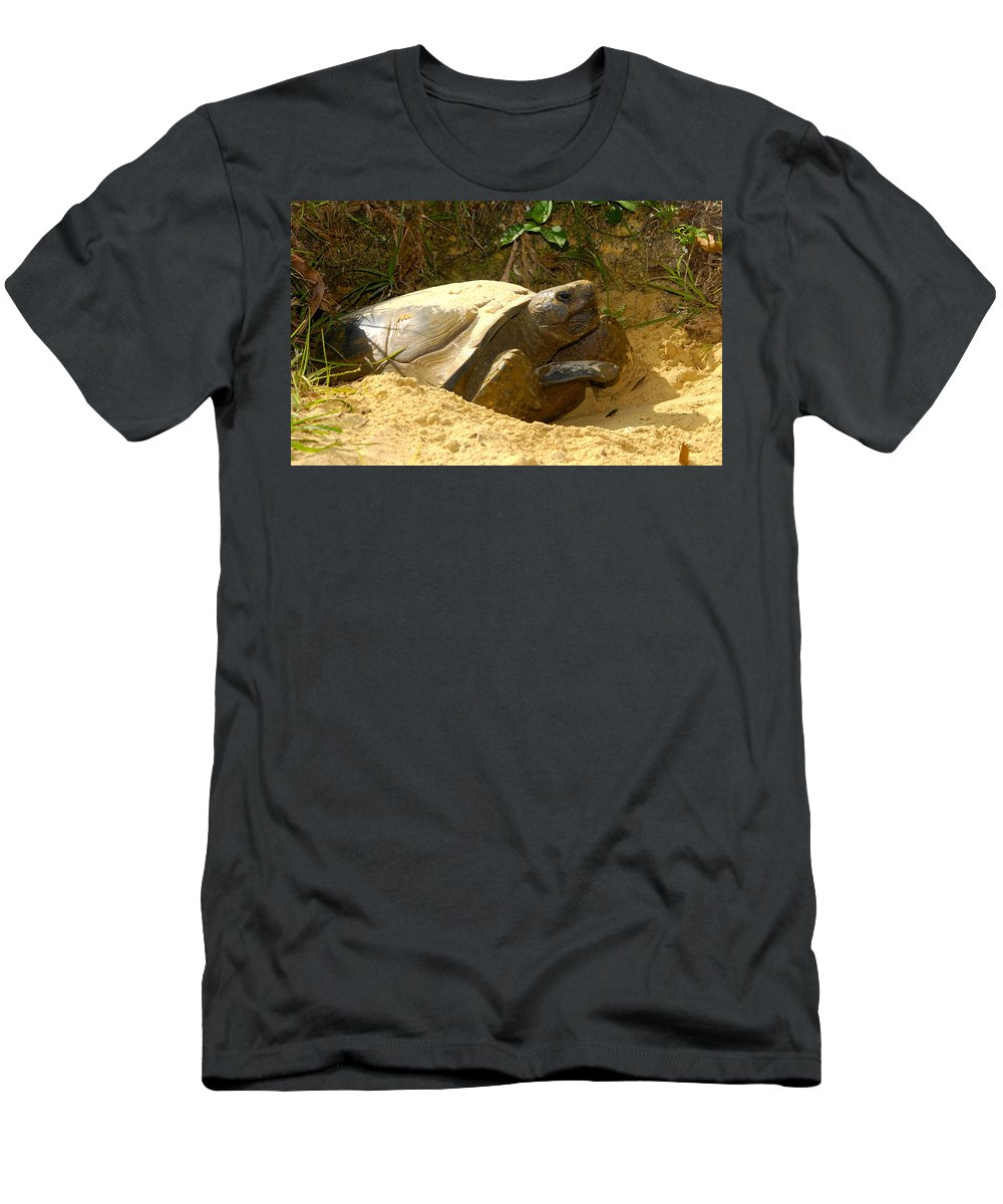 Florida Gopher Tortoise Men's T-Shirt (Athletic Fit) featuring the photograph Florida Gopher Tortoise And Home by David Lee Thompson