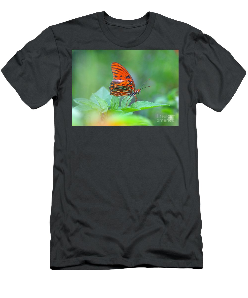 Butterfly Men's T-Shirt (Athletic Fit) featuring the photograph Gulf Fritillary 2 by Nancy L Marshall
