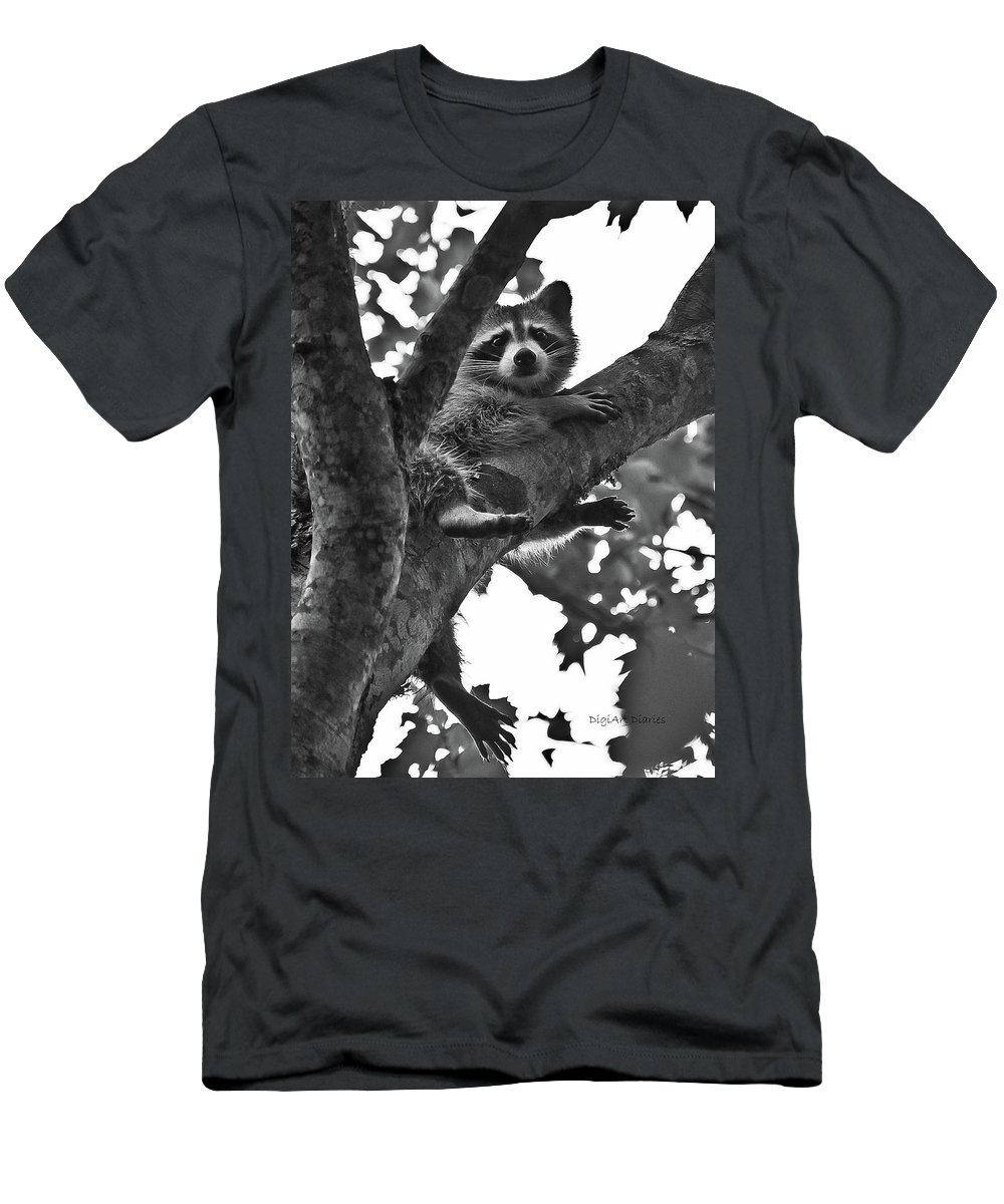 Raccoon Men's T-Shirt (Athletic Fit) featuring the photograph Hangin Out by DigiArt Diaries by Vicky B Fuller