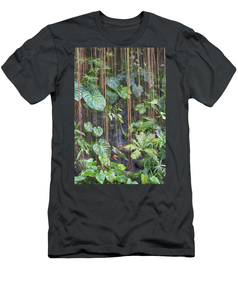 Atlanta Men's T-Shirt (Athletic Fit) featuring the photograph Hanging Gardens V5 by Douglas Barnard