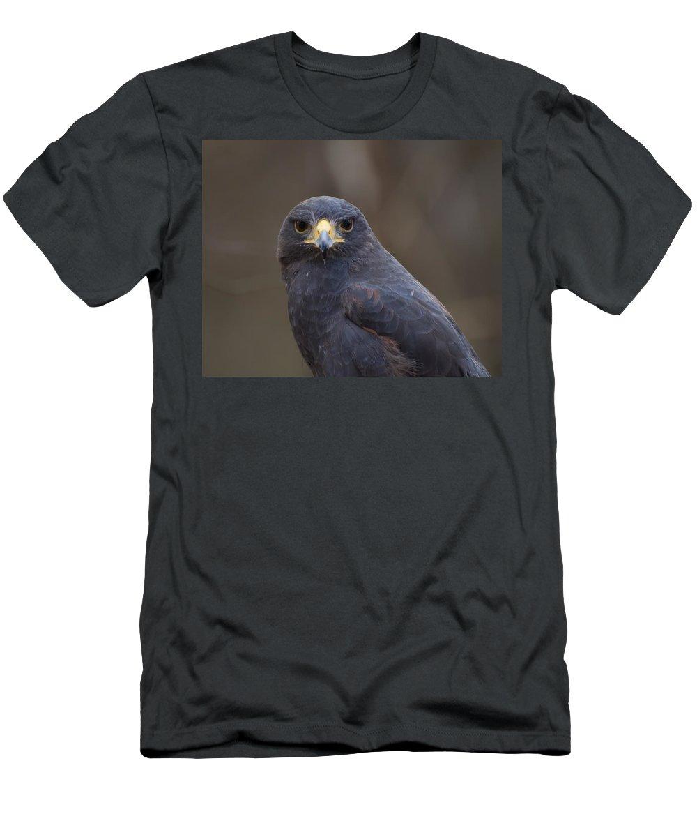 Harris Hawk Men's T-Shirt (Athletic Fit) featuring the digital art Harris Hawk by Chris Flees