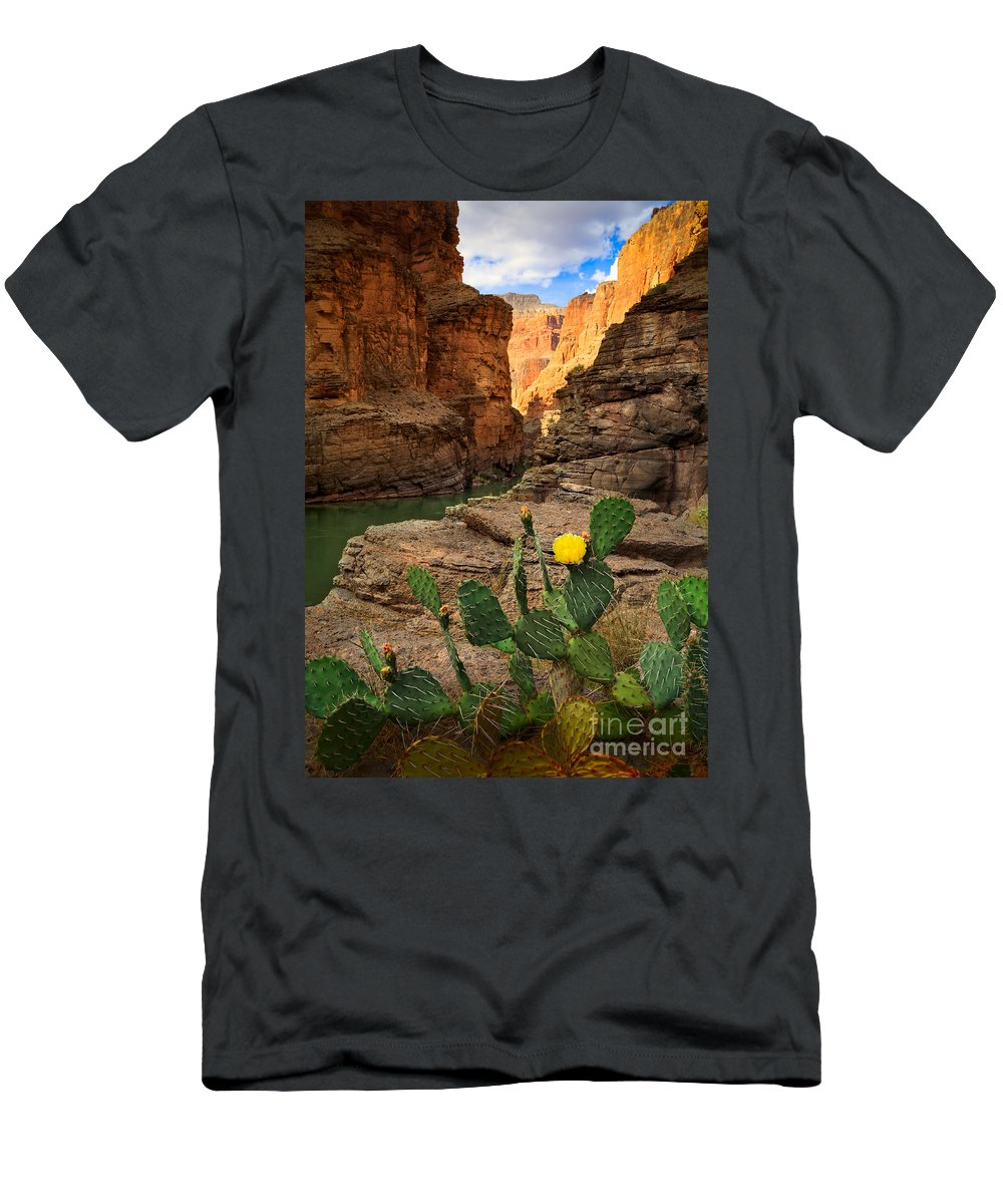 America Men's T-Shirt (Athletic Fit) featuring the photograph Havasu Cactus by Inge Johnsson