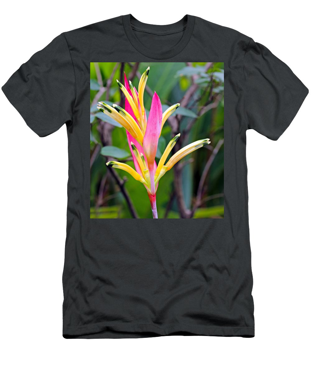 Outdoor Men's T-Shirt (Athletic Fit) featuring the photograph Heliconia Psittacorum by Paul Fell