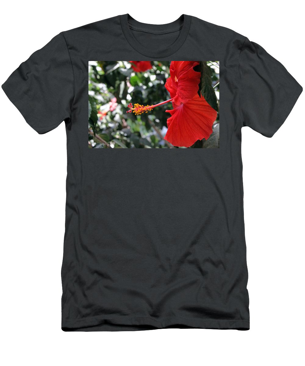 Red Men's T-Shirt (Athletic Fit) featuring the photograph Hibiscus 2685 by Carolyn Stagger Cokley