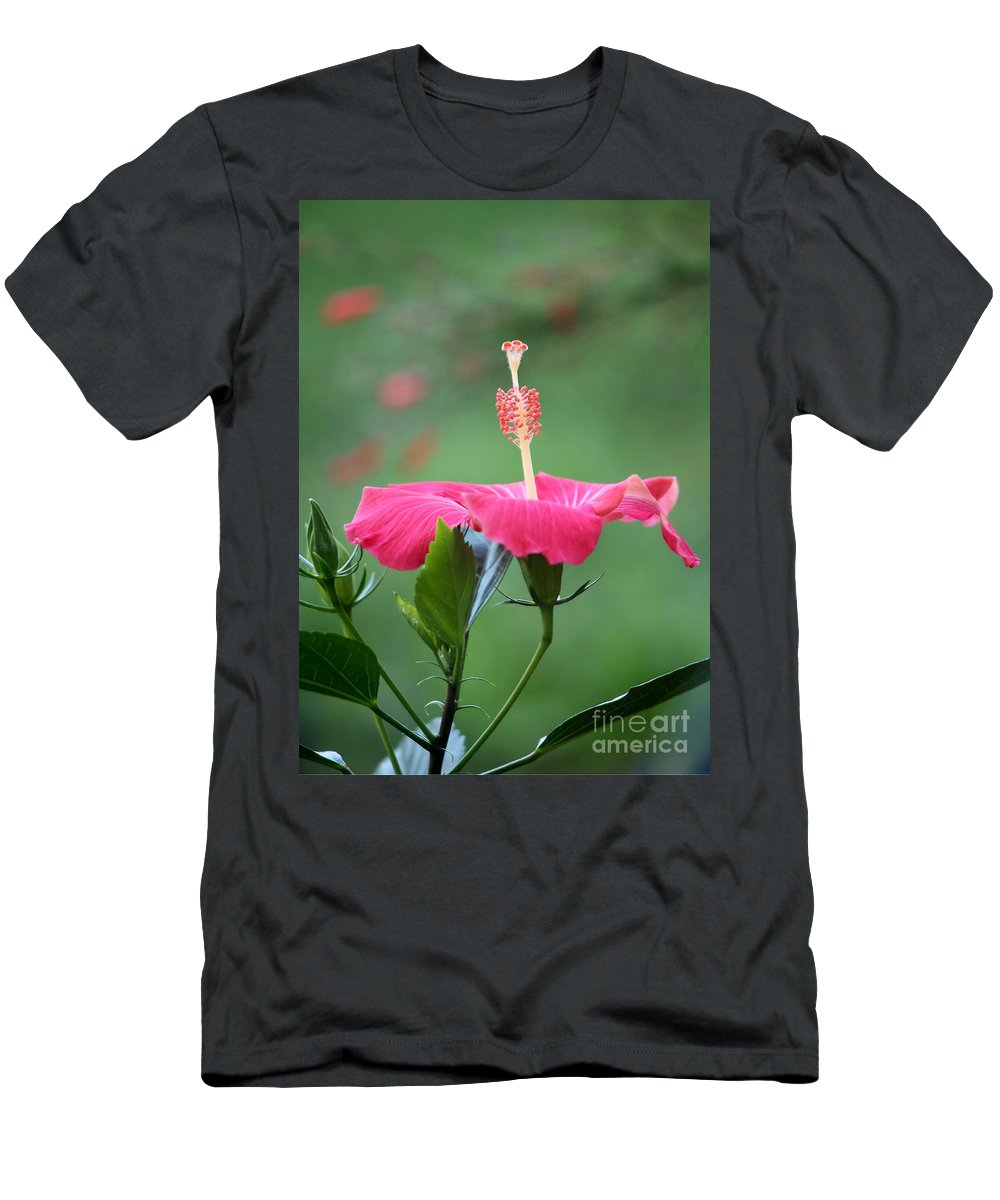 Macro Men's T-Shirt (Athletic Fit) featuring the photograph Hibiscus Ballerina by Sabrina L Ryan
