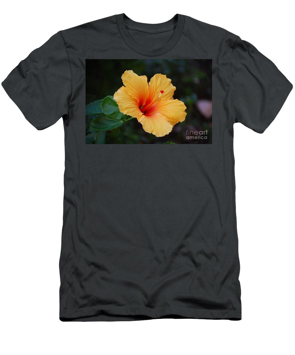 Hibiscus Men's T-Shirt (Athletic Fit) featuring the photograph Hibiscus Flower In Puerto Rico by DejaVu Designs