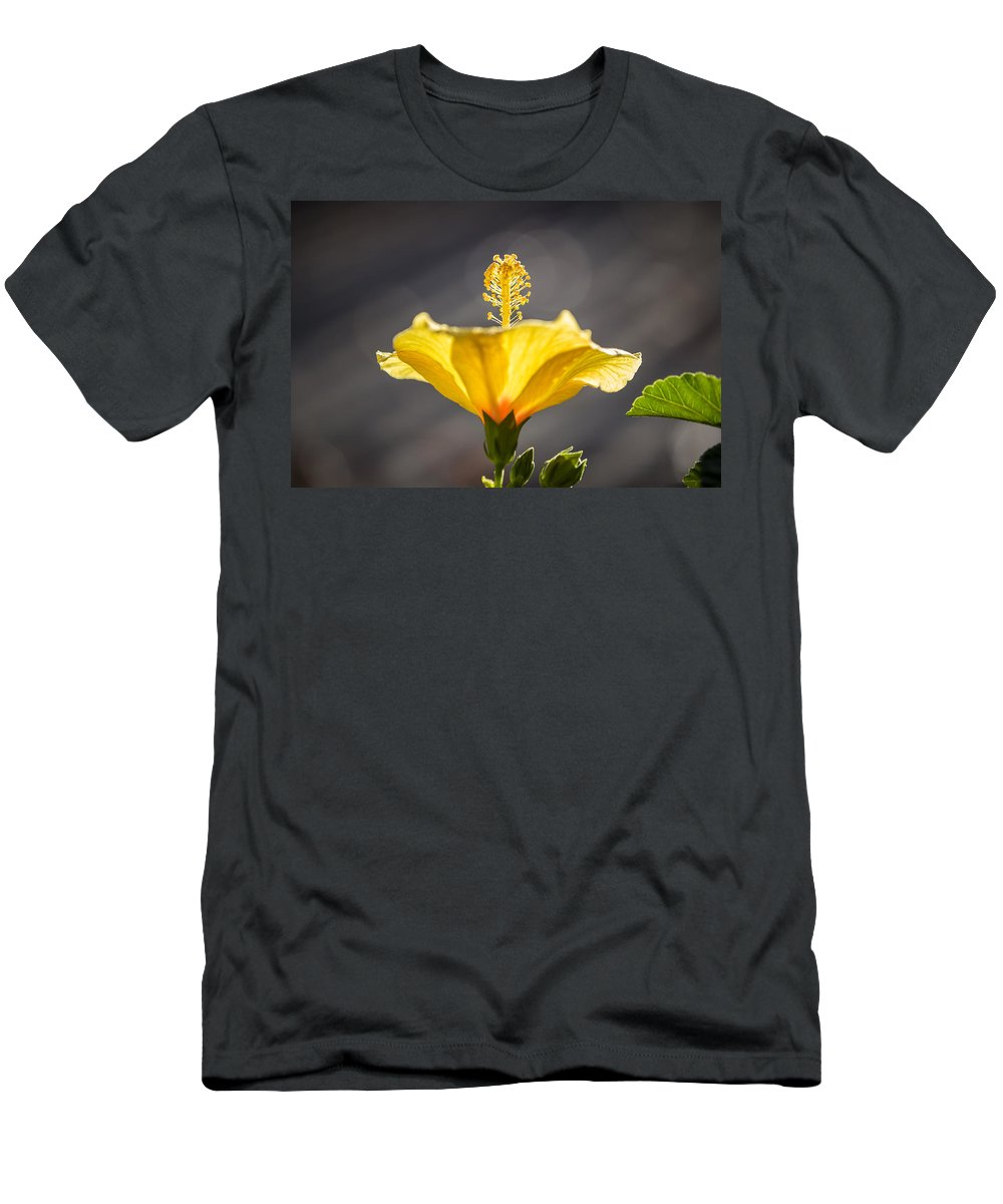 Flower Men's T-Shirt (Athletic Fit) featuring the photograph Hibiscus Halos by Hugh Stickney