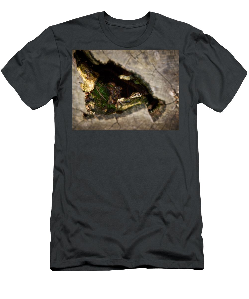 Francacorta Men's T-Shirt (Athletic Fit) featuring the photograph Hiding. Montorfano. Cologne by Jouko Lehto