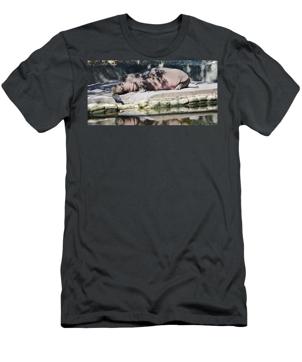Hippo Men's T-Shirt (Athletic Fit) featuring the photograph Hippo At Leisure by Linda Kerkau