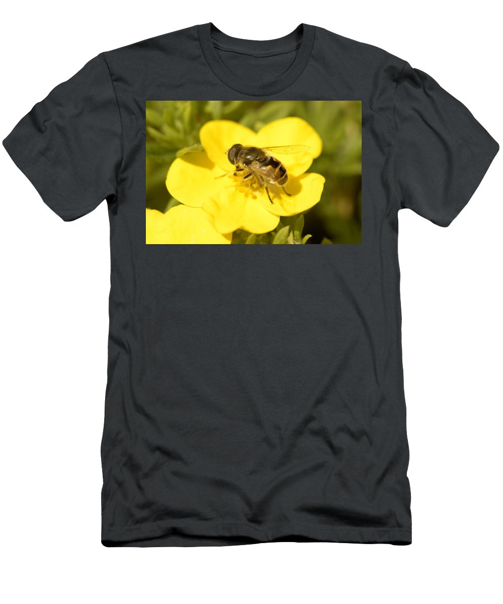 Bee Men's T-Shirt (Athletic Fit) featuring the photograph Honey Bee 9411 by Bonfire Photography