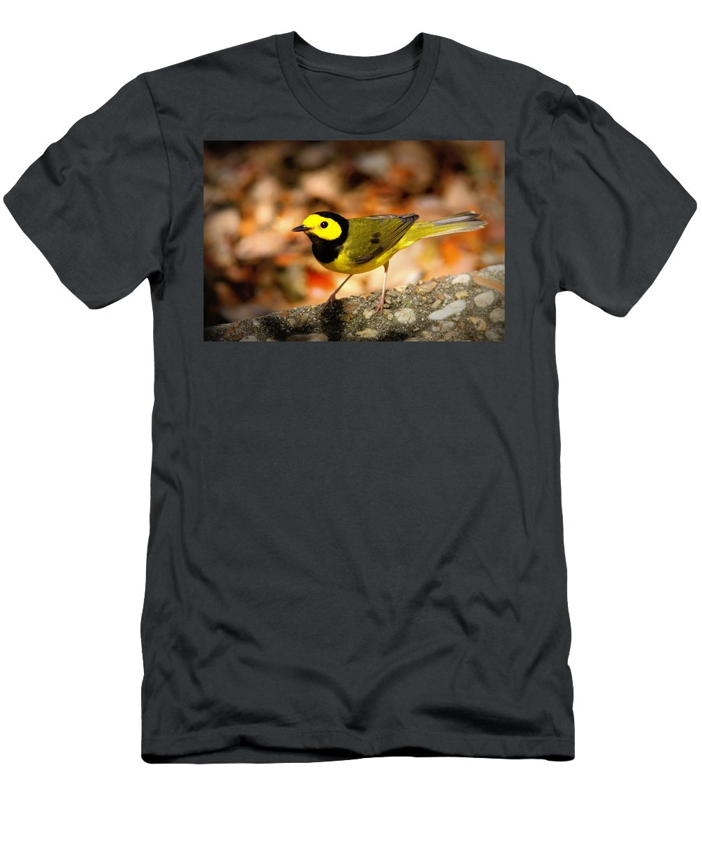 Bird Men's T-Shirt (Athletic Fit) featuring the photograph Hooded Warbler - Img 9352-003 by Travis Truelove