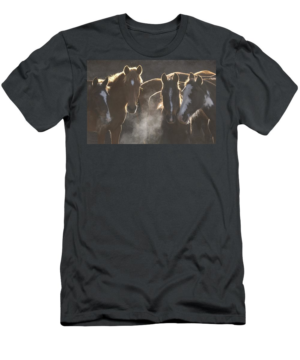 Feb0514 Men's T-Shirt (Athletic Fit) featuring the photograph Horses At Round Up Ecuador by Pete Oxford