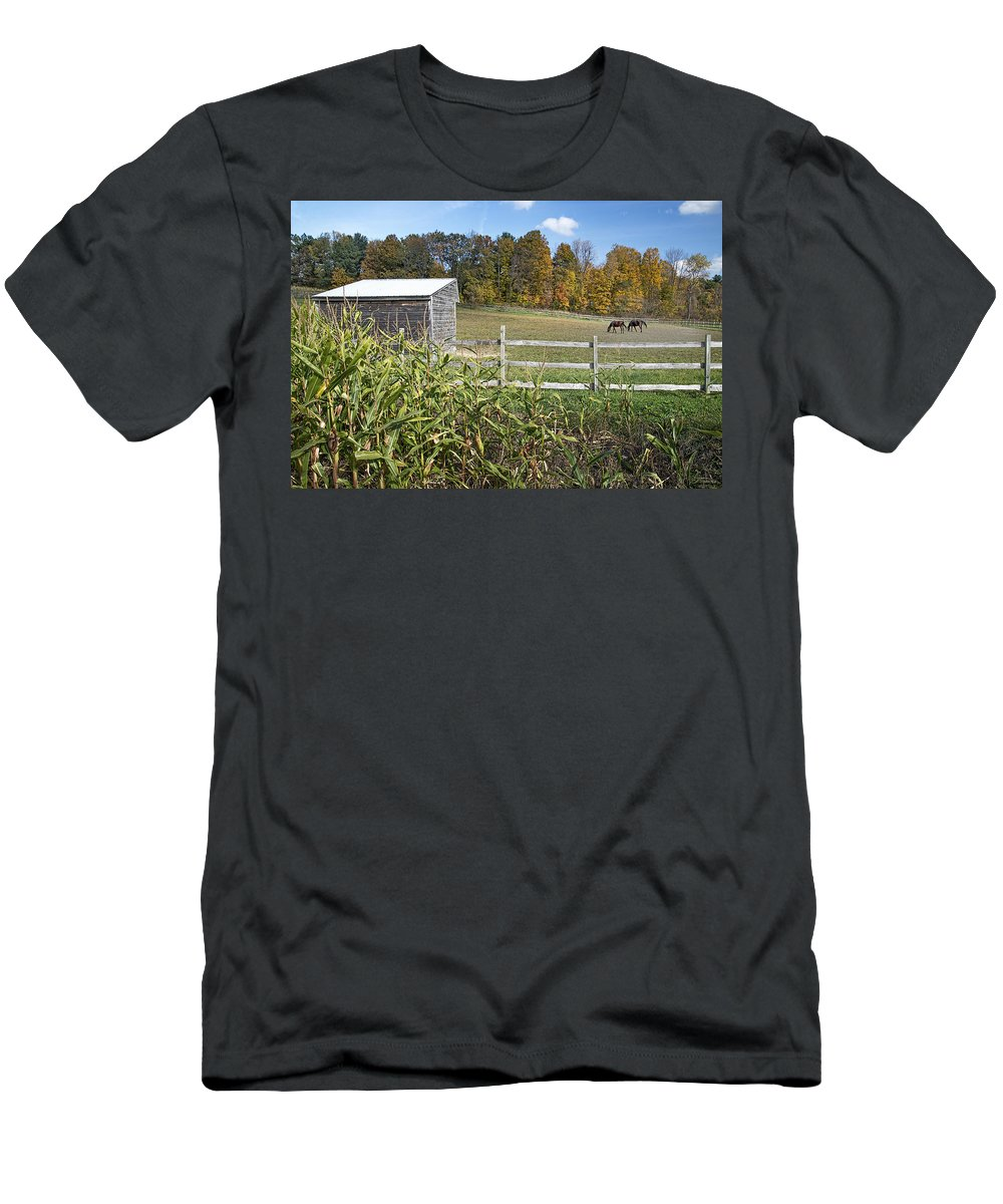 Pasture Men's T-Shirt (Athletic Fit) featuring the photograph Horses In Autumn Pasture by Ray Summers Photography