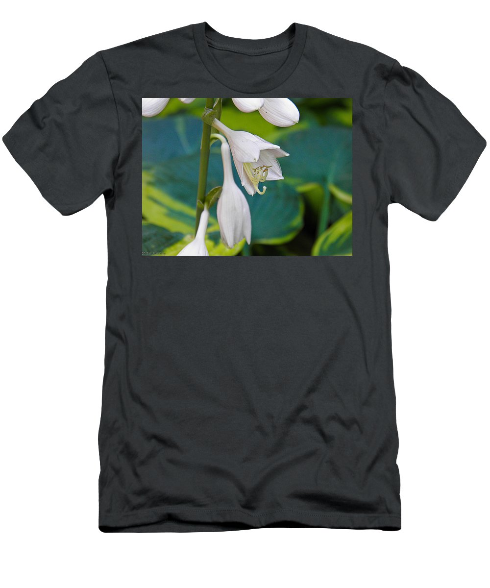 Hosta Men's T-Shirt (Athletic Fit) featuring the photograph Hosta by Nick Kirby