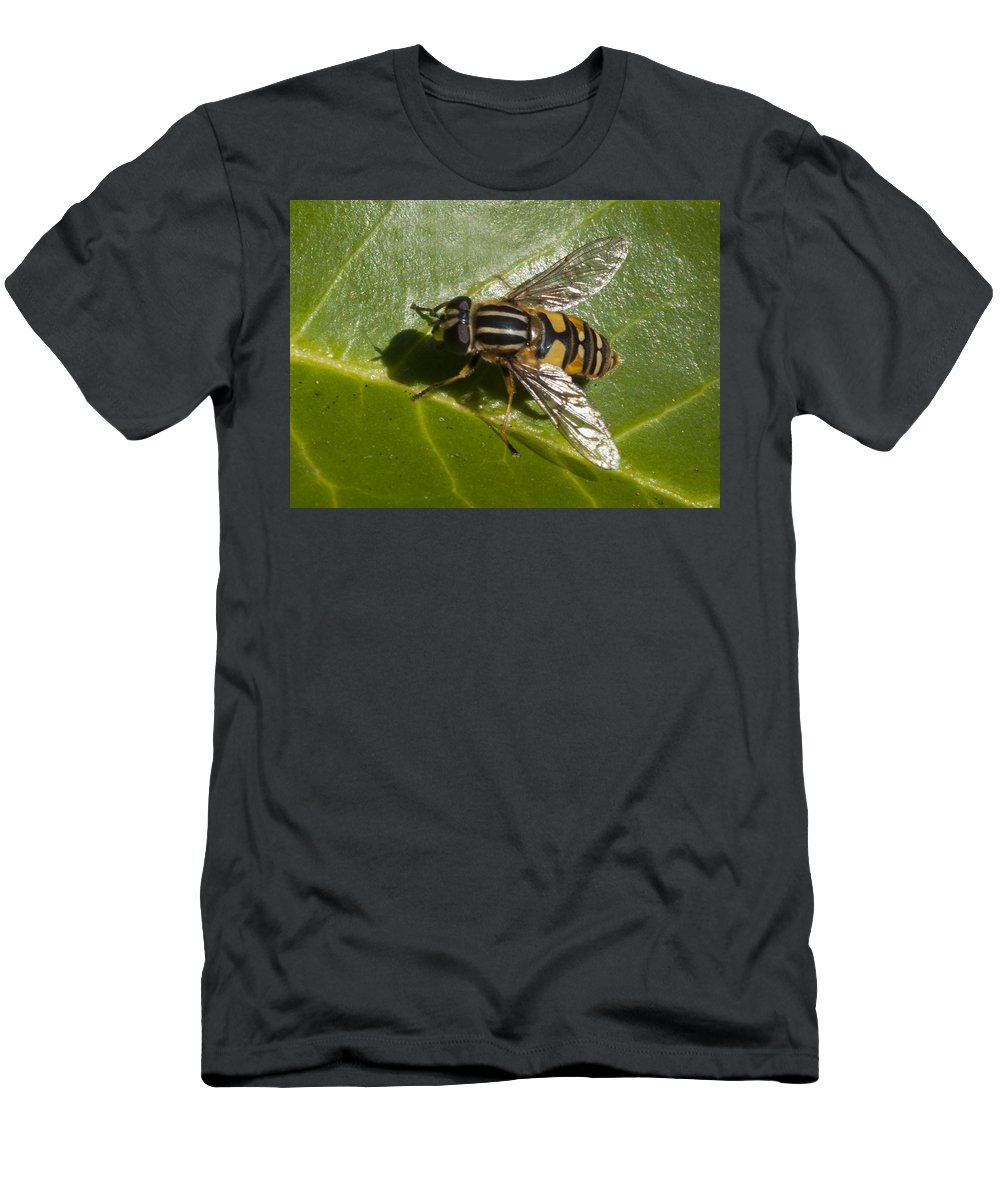 Hoverfly Men's T-Shirt (Athletic Fit) featuring the photograph Hoverfly by Richard Thomas