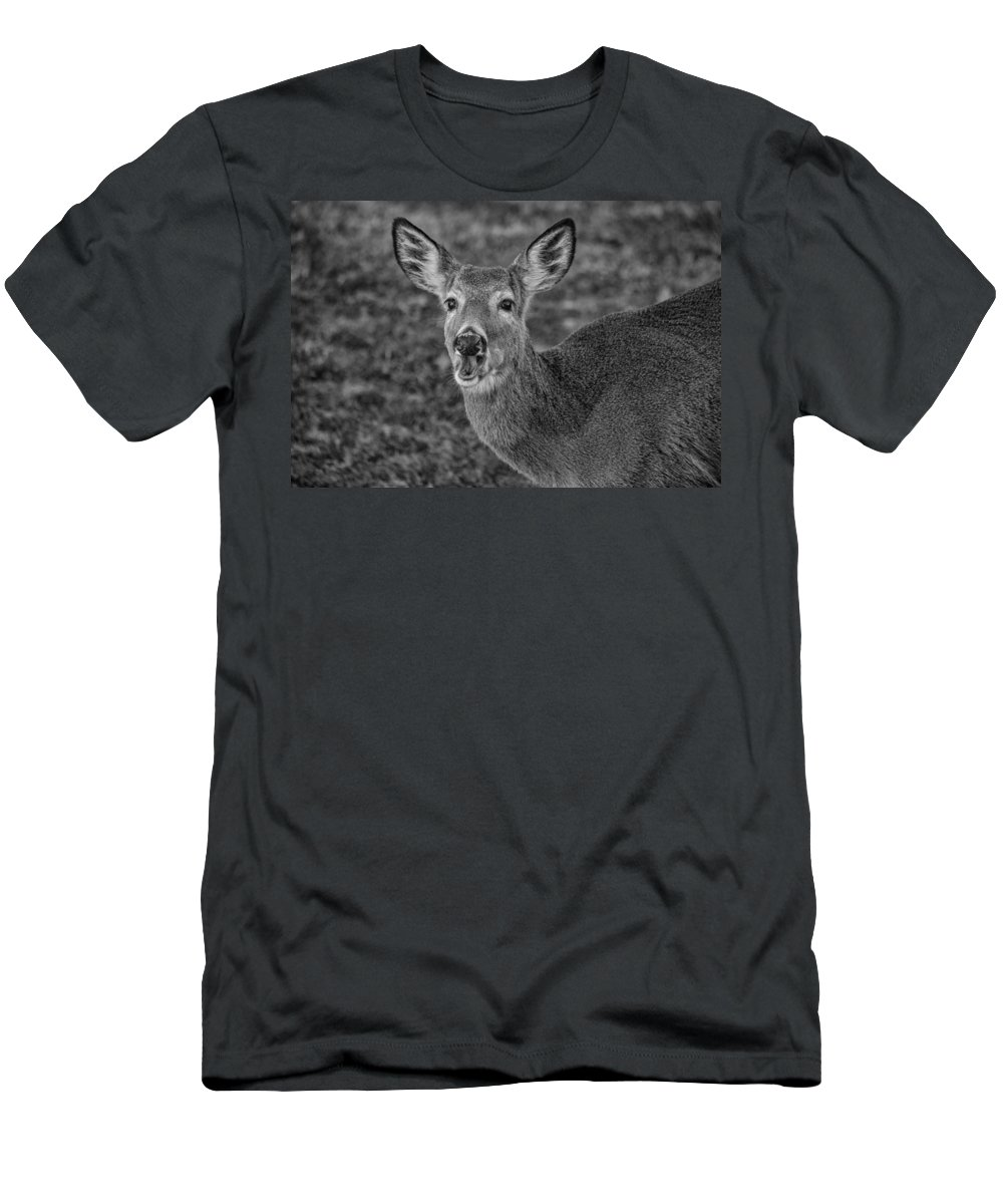 Deer Men's T-Shirt (Athletic Fit) featuring the photograph How Ya Doing by Karol Livote