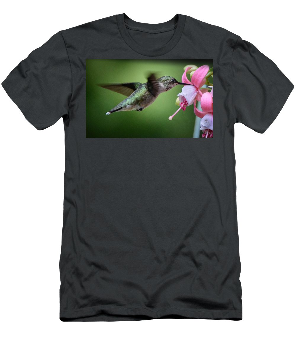 Hummingbird Men's T-Shirt (Athletic Fit) featuring the photograph Hummingbird Carbs by Amy Porter