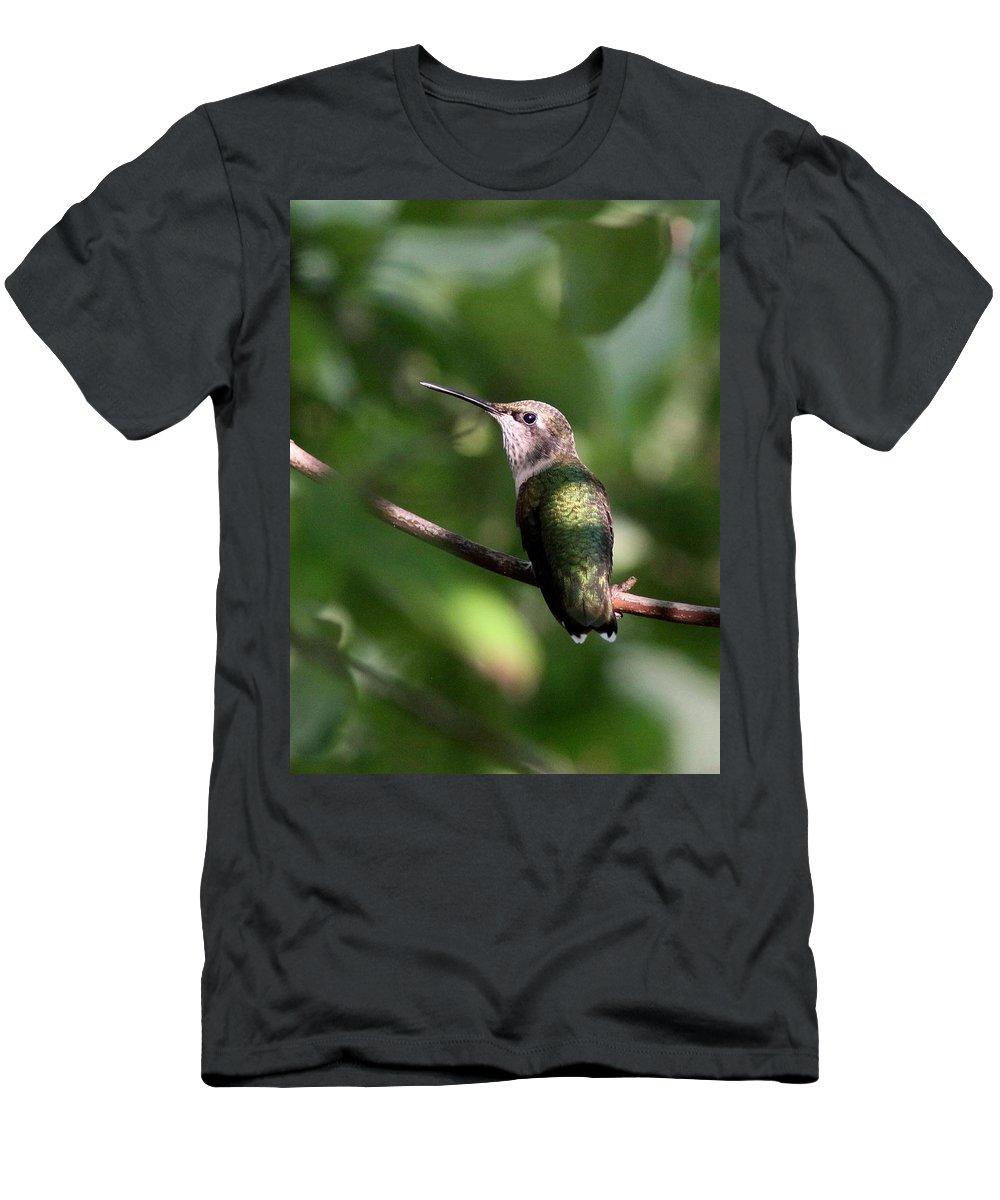 Hummingbird Men's T-Shirt (Athletic Fit) featuring the photograph Hummingbird - Ruby-throated Hummingbird - Detail by Travis Truelove