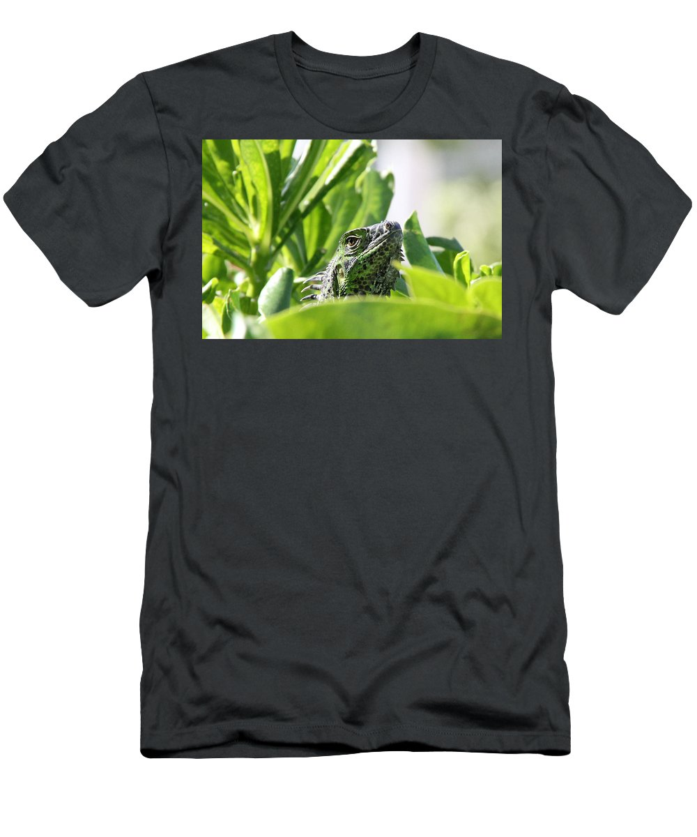 Iguana Men's T-Shirt (Athletic Fit) featuring the photograph Iguana by Adrienne Franklin