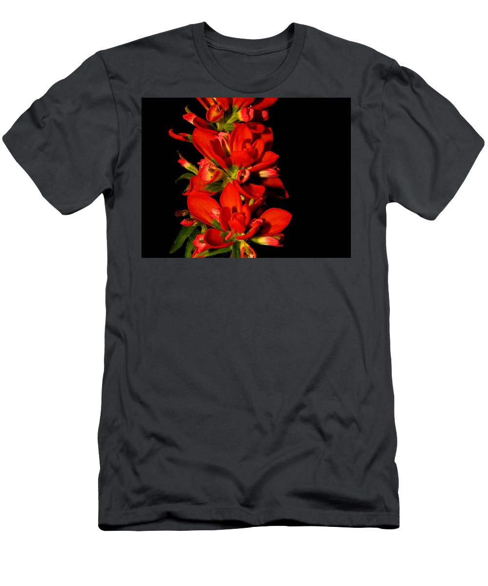Indian Paintbrush Men's T-Shirt (Athletic Fit) featuring the photograph Indian Paintbrushs For Mom by Stuart Harrison