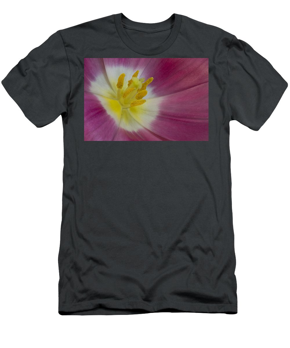Petals Men's T-Shirt (Athletic Fit) featuring the photograph Inside A Pink Tulip by Susan Candelario